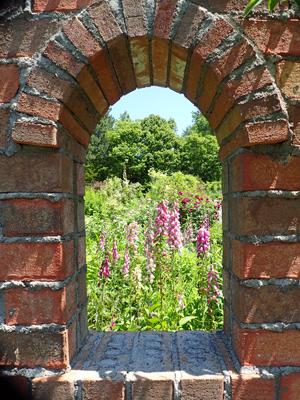 04マザーボーダーの庭の眺め.jpg