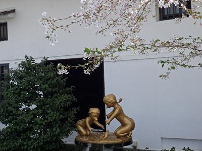 11黄桜カッパ・河童と桜.jpg