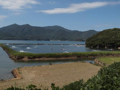 17車海老養殖場と棚田.jpg